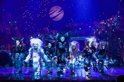 Broadway musicals are the newest addition to the diverse entertainment line-up at Sands Resorts Cotai Strip Macao, with the record-breaking CATS coming to The Venetian Theatre March 6-15. Mandatory credit: Image by Juho Sim