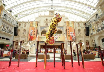 """The 15 troupes competing in the male category of """"MGM Lion Dance Championship – Macau International Invitational 2015"""" wowed the crowd with gravity-defying moves."""