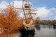 上海迪士尼度假区以一系列精彩纷呈的全新体验邀请游客共度整个金色秋季