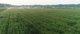 种养循环农业模式