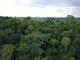 亚马逊雨林原貌