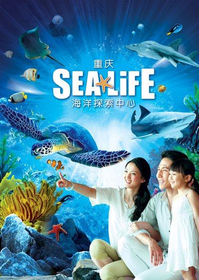 重庆海洋探索中心明年春季正式开业 为您开启奇幻海洋之旅