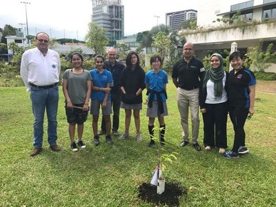Asia Plantation Capital Donates Agarwood Tree to UWC Singapore