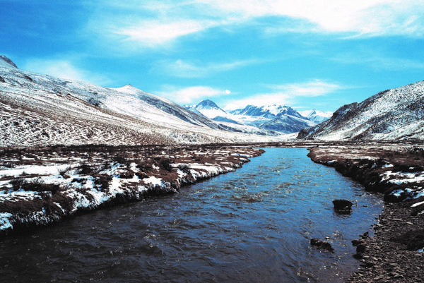 Sanjiangyuan National Nature Reserve, China's most important source of freshwater, has long been recognized as a gene bank of rare Tibetan Plateau species like the endangered Tibetan antelope