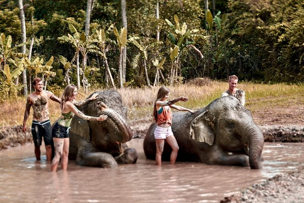 Get down and dirty with the Sumatran Elephants at Bali Zoo