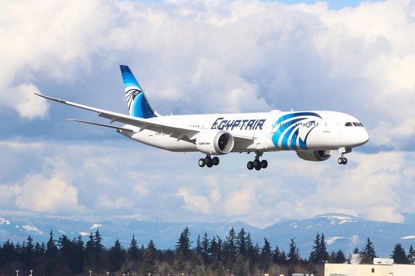 埃及航空航班正在降落,图源:埃及航空