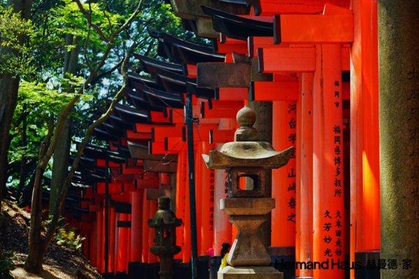 日本文化体验 -- 稻荷大社