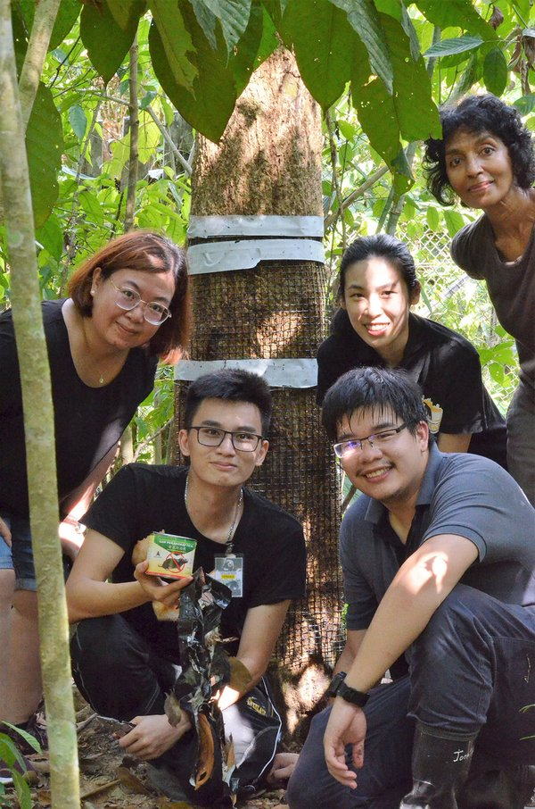 Ecological Research on Sun Bears Conducted by Sunway University