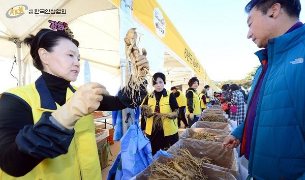 The Korea Ginseng Association Announces Korean Ginseng Festivals Around the Nation