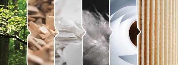 兰精升级莱赛尔超短纤维产品并扩大产能 | 美通社