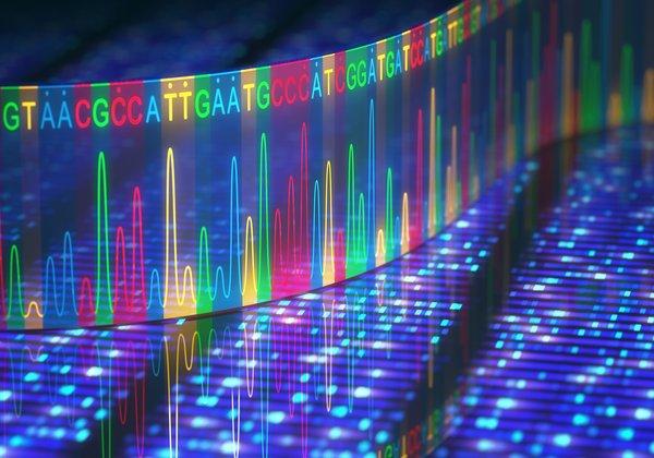 目前,大多数 DNA 测序方法依赖于激光荧光技术,不同的荧光染料分别标的四种不同的核苷酸 (ACGT)。